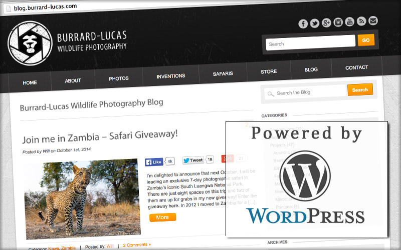 Top 10 Reasons of Web Designer Should Consider WordPress-Add a Blog To Your Website