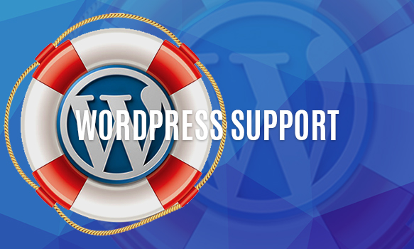 Top 10 Reasons of Web Designer Should Consider WordPress-Wonderful Support